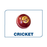 Info and Tips on Cricket