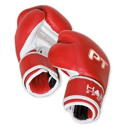 HART PT Boxing Gloves 12oz