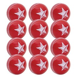 HART Astro Cricket Ball 130g Dozen