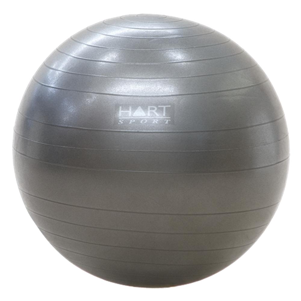 Swiss Ball 121