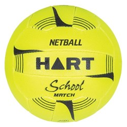 Hart School Match Netball