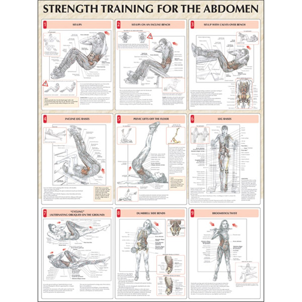 Strength Training: Strength Training Poster Set
