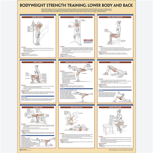 Bodyweight Strength Training Poster Set