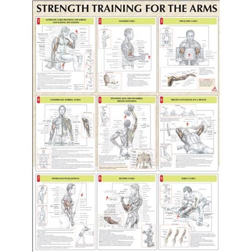 Free Strength Training Anatomy (Sports Anatomy)   PDF books; 2.