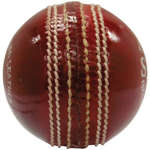 HART Shield 2pc Cricket Balls